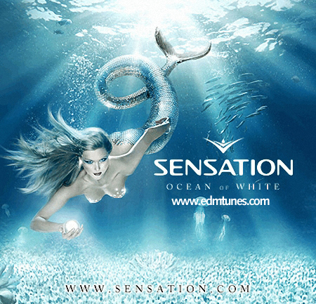 Sensation Ocean Of White never miss the beat
